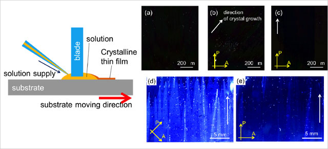 Inch-Size Solution-Processed Single-Crystalline Films of High-Mobility Organic Semiconductors