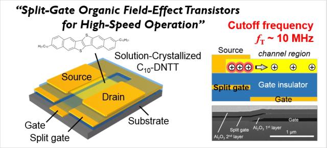Split-Gate Organic Field-Effect Transistors for High-Speed Operation