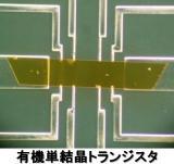 有機単結晶トランジスタ