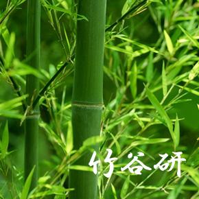 竹谷研イメージ